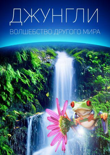Джунгли: Волшебство другого мира