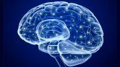 Лекция: «Нейроэкономика. Как наш мозг принимает решения?»