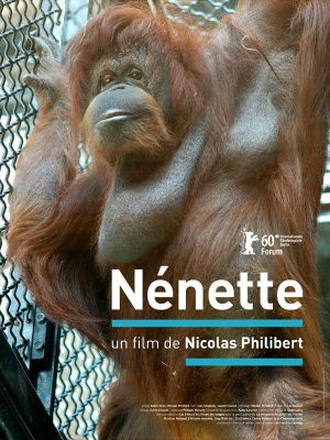 Ненетт